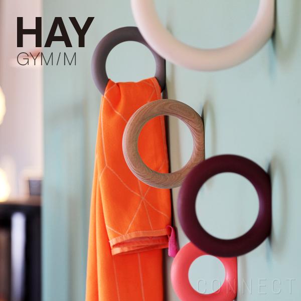hay_gymm_k1